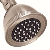 moda brushed nickel shower head